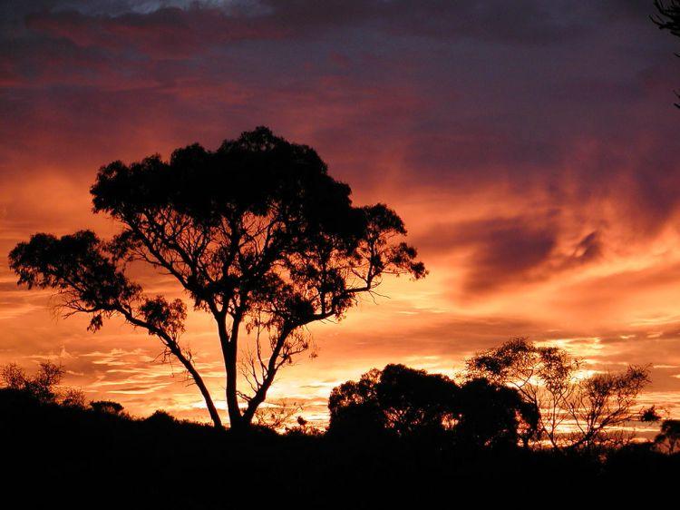 sunrise-perth-western-australia-6332260